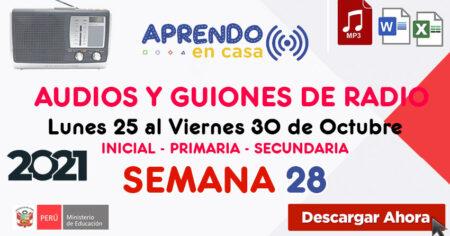 AUDIOS Y GUIONES SEMANA 28 del 23 al 30 de OCTUBRE