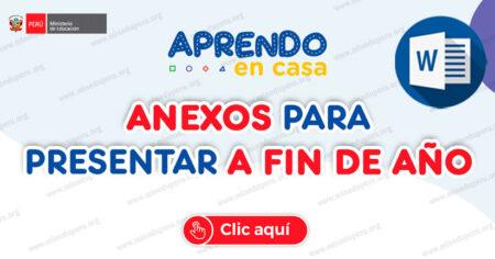 ANEXOS PARA PRESENTAR A FIN DE AÑO
