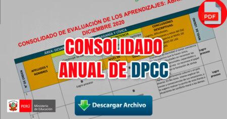 CONSOLIDADO ANUAL  DE DPCC