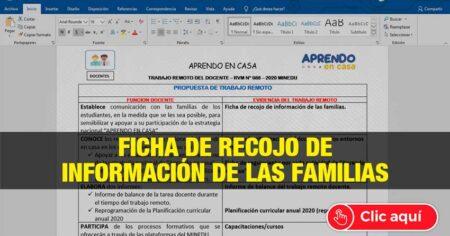 FICHA DE TRABAJO REMOTO