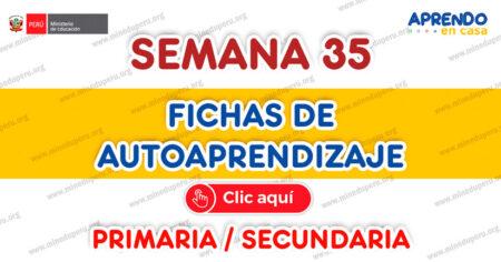 ✒FICHAS DE AUTOAPRENDIZAJE SEMANA 35 PLATAFORMA EDUCATIVA APRENDO EN CASA