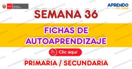 FICHAS DE AUTOAPRENDIZAJE SEMANA 36 PLATAFORMA EDUCATIVA APRENDO EN CASA