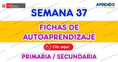 ✒FICHAS DE AUTOAPRENDIZAJE SEMANA 37 PLATAFORMA EDUCATIVA APRENDO EN CASA