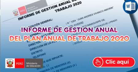 INFORME DE GESTION ANUAL DEL PLAN ANUAL DE TRABAJO 2020