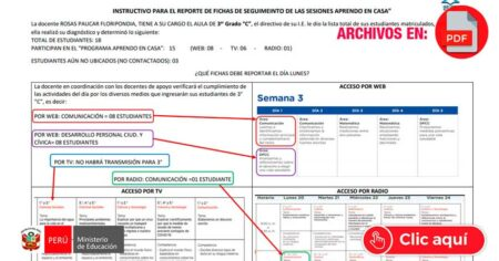 INSTRUCTIVO PARA EL REPORTE DE FICHAS DE SEGUIMIENTO DE LAS SESIONES