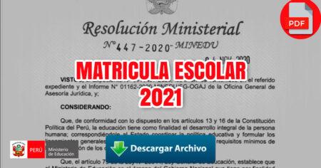 MATRICULA ESCOLAR - 2021