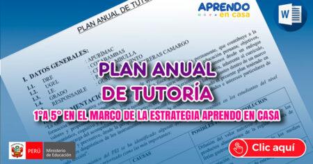 FABULOSO: Plan Anual de Tutoría desarrollado de nivel Secundario de 1°a 5° en el marco de la estrategia Aprendo en Casa.