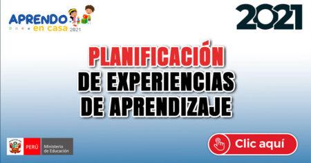 PLANIFICACION DE EXPERIENCIAS DE APRENDIZAJE 2021