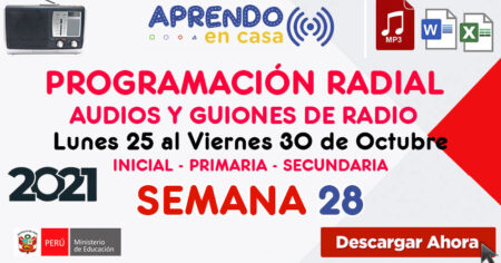 PROGRAMACIÓN RADIAL SEMANA 28 Audios y Guiones (Word – Mp3)