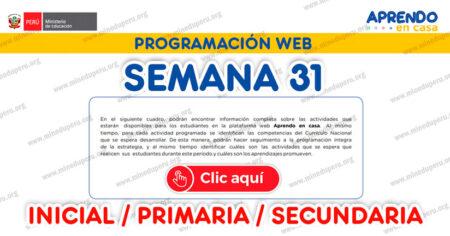 PROGRAMACIÓN WEB SEMANA 31 (LUNES 02 de NOVIEMBRE al VIERNES 06 NOVIEMBRE INICIAL PRIMARIA Y SECUNDARIA