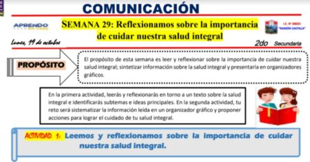 SESION COMUNICACION 2° - SEMANA 29