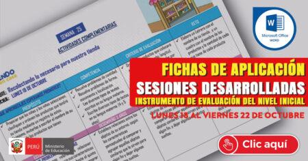 FICHAS DE APLICACIÓN, SESIONES DESARROLADAS e INSTRUMENTOS DE EVALUACIÓN