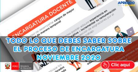 TODO LO QUE DEBES DE SABER SOBRE EL PROCESO DE ENCARGATURA DOCENTE 2020 - 2021