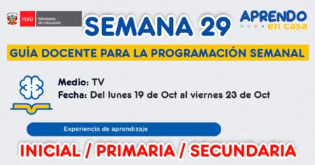 GUÍA DOCENTE TV📺 y RADIO📻 para la PROGRAMACIÓN SEMANAL 29 – LUNES 19 de OCTUBRE al VIERNES 23 OCTUBRE, INICIAL, PRIMARIA Y SECUNDARIA